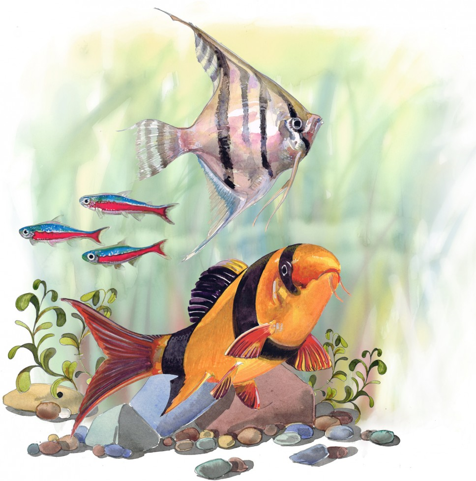A painting of tropical fish