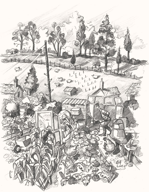 Pilton allotment drawing
