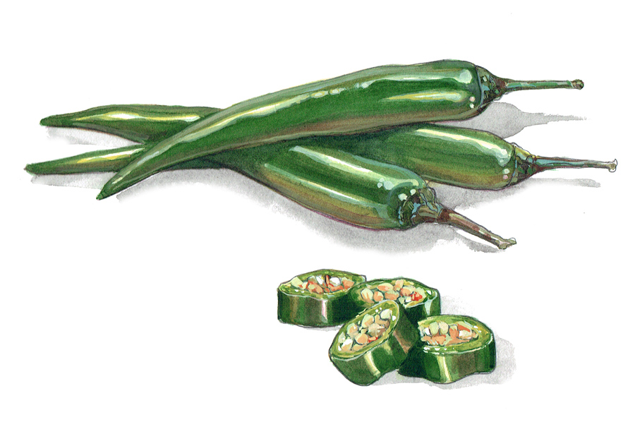 Green Chillies painting for packaging