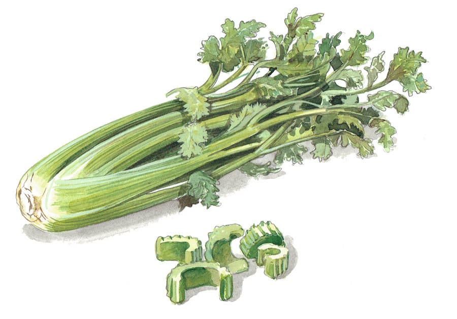 celery painting for packaging
