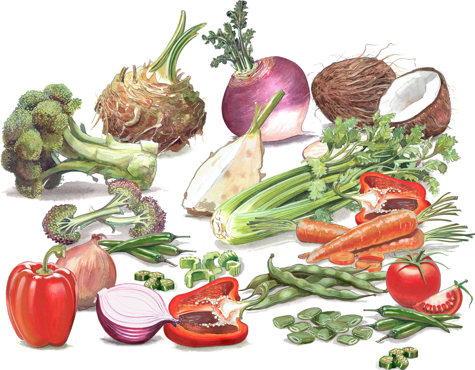 illuistraton of vegetables for packaging