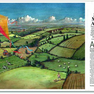 Kite illustration fro Countryfile