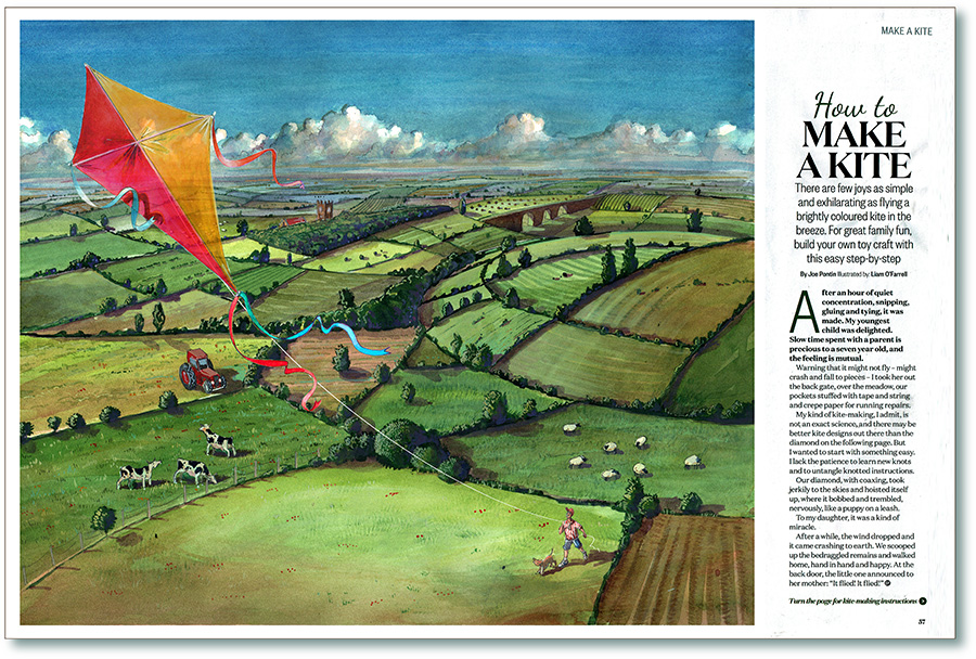 Kite illustration fro Countryfile