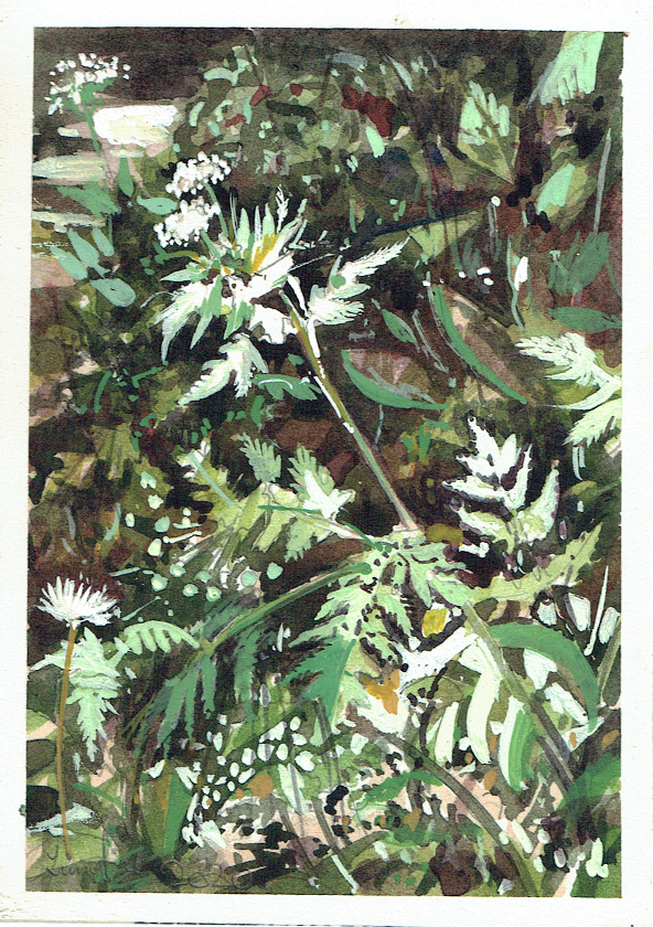 Painting of wild garlic and cow parsley Somerset