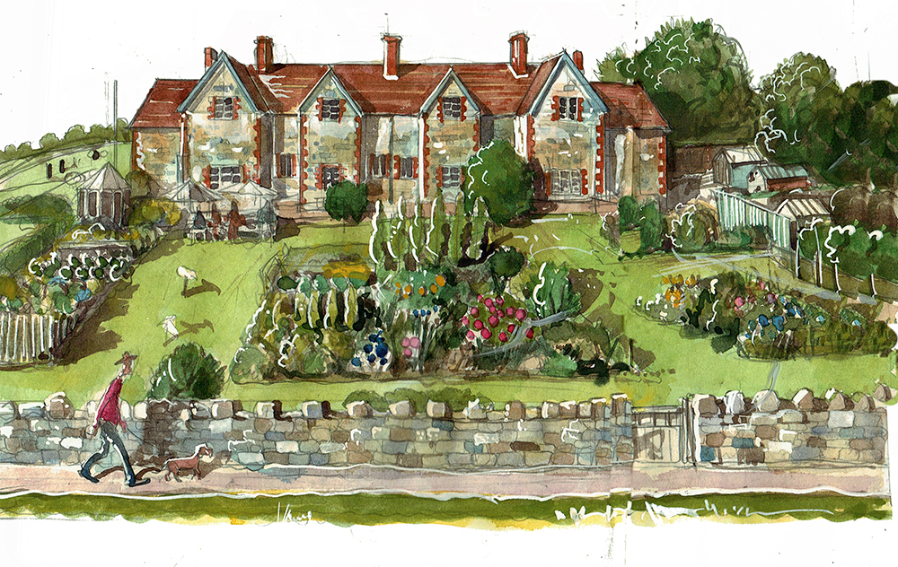 An allotment visual painting in Fonthill Bishop